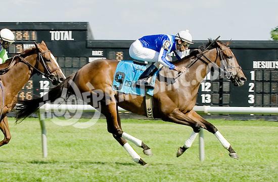 Thundering Emilia winning The John W. Rooney Memorial Stakes at Delaware Park on 6/2/12