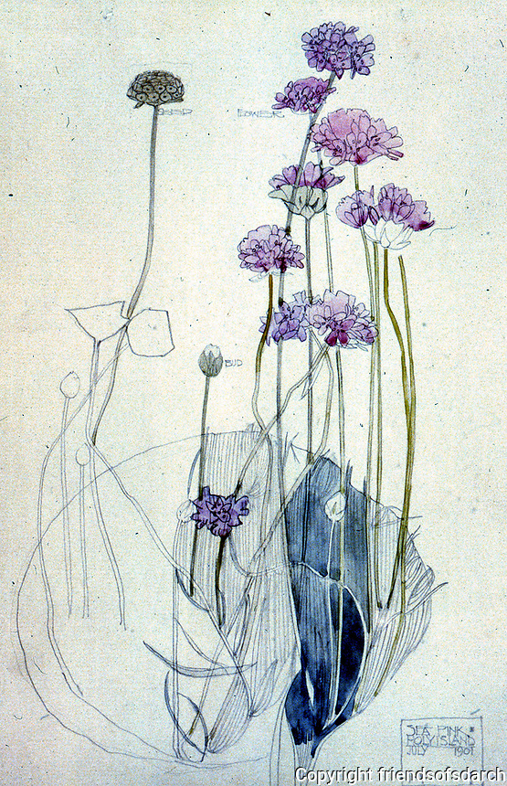 "Mackintosh Collection: Hunterian Art Gallery, U. of Glasgow. Watercolor, ""Sea Pink, Holy Island"" 1901."