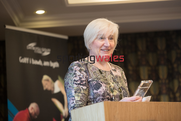 Golf Union of Wales Awards 2017<br /> Celtic Manor Resort<br /> 03.03.17<br /> ©Steve Pope - Sportingwales