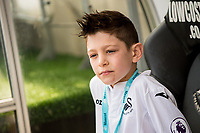 Sunday April 02 2017 <br /> Pictured: Mascot <br /> Re: Premier League match between Swansea City and Middlesbrough at The Liberty Stadium, Swansea, Wales, UK. SUnday 02 April 2017