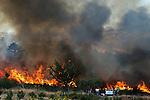 General view of a wildfire in Soutelinho da Raia, in Portugal on August 24, 2013. (c) Pedro ARMESTRE.