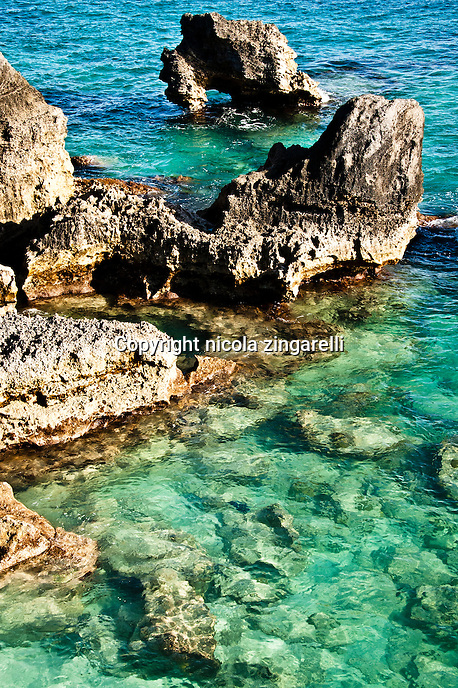 Rocky outcrop along the coast of Bermuda