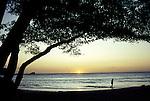 Nosara Beach, Nicoya Peninsula