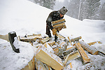 A young woman collects firewood in Jackson Hole, Wyoming.