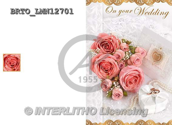 Alfredo, WEDDING, HOCHZEIT, BODA, photos+++++,BRTOLMN12701,#W#