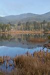 Oregon coast, Spirit Lake,  Tillamook County, Oregon, Pacific Northwest, North America, water, lakes, Oregon Coast,