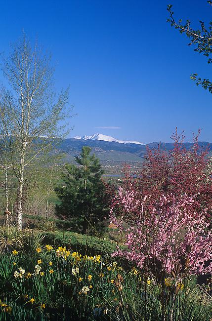 Spring, Mt. Meeker, Boulder, Colorado