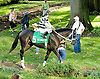 Outhaul before The Dover Stakes at Delaware Park on 10/6/12