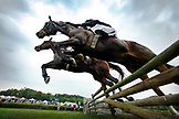 USA, Tennessee, Nashville, Iroquois Steeplechase, jockeys and their horses getting air over a jump during the Timber Race