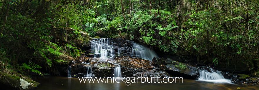 Sacred waterfall on Piste Ranasoa. Mid-altitude rain forest stream. Andasibe-Mantadia NP, eastern Madagascar.