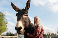Deb Kidwell with AMJR PCF Genesis, an American Mammoth Jackstock, on Saturday, Nov. 20, 2010 at Lake Nowhere Mule and Donkey Farm in Martin, Tenn. Kidwell breeds American Mammoth Jackstock, the only American breed of Ass, and one started by George Washington. The breed, however, is dying off with the mechanization of farm equipment.