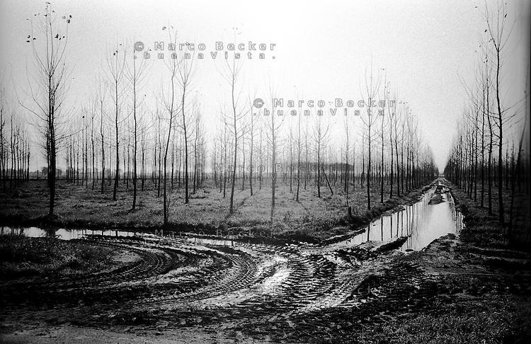 Parco Agricolo Sud Milano presso Noviglio. Tracce di pneumatici nel fango --- Rural Park South Milan near Noviglio. Signs of tires in the mud