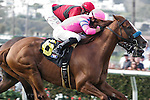 City to City (num. 6) winning the John C. Mabee Stakes at Del Mar Race Course in Del Mar, California on August 12, 2012.