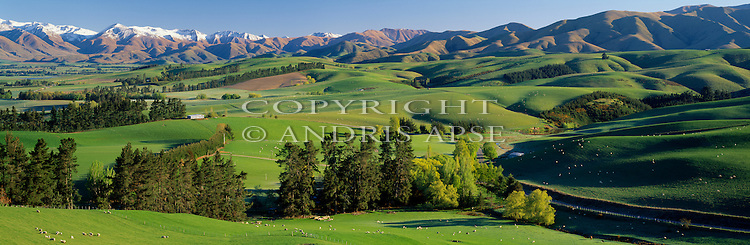 Rolling farmland in the Fairlie area. South Canterbury. New Zealand.