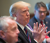 United States President Donald J. Trump holds a luncheon with the Baltic States Heads of Government at The White House in Washington, DC, April 3, 2018. <br /> Credit: Chris Kleponis / Pool via CNP