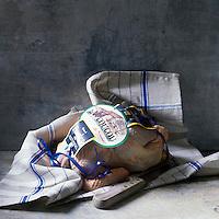 Europe/France/Bretagne/35/Ille-et-Vilaine : La Coucou de Rennes , Race rustique de Volaille - Stylisme : Valérie LHOMME