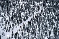 Karen Ramstead on Trail into Takotna Alaska<br /> 2004 Iditarod