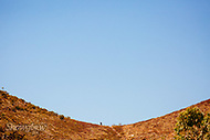 Image Ref: CA523<br />