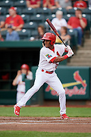 Springfield Cardinals left fielder Magneuris Sierra (29) at bat during a game against the Corpus Christi Hooks on May 31, 2017 at Hammons Field in Springfield, Missouri.  Springfield defeated Corpus Christi 5-4.  (Mike Janes/Four Seam Images)