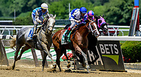 ELMONT, NY - JUNE 09: Prince Lucky #5, ridden by John Velazquez wins the Easy Goer Stakes on Belmont Stakes Day at Belmont Park on June 9, 2018 in Elmont, New York. (Photo by Bob Mayberger/Eclipse Sportswire/Getty Images)