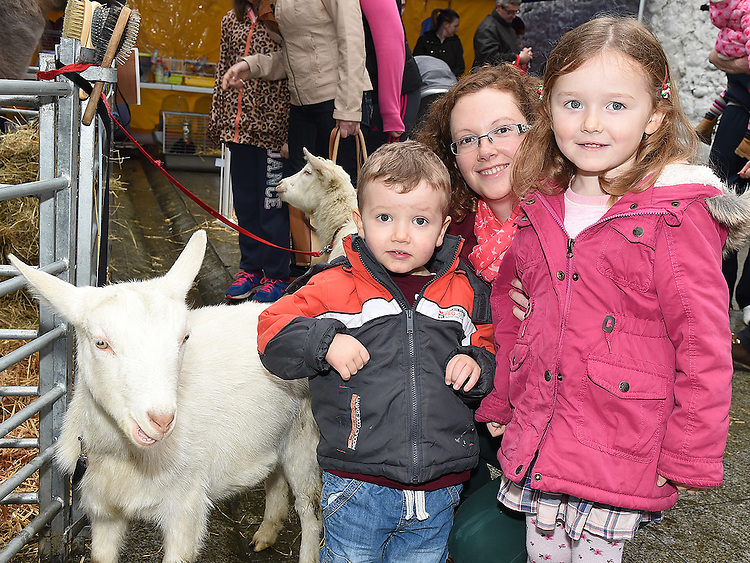 Hayley, Oisín and Niamh Reilly pictured at the Nativity Farm at The Old Abbey Lane. Photo:Colin Bell/pressphotos.ie