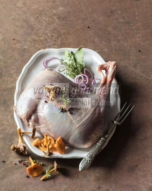 Gigue de chevreuil / Haunch of venison - Stylisme : Valérie LHOMME