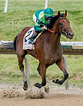July 11, 2020: Dunbar Road #2, ridden by Irad Ortiz, Jr., wins the Delaware Handicap on Delaware Handicap Day at Delaware Park in New Stanton, Delaware. Scott Serio/Eclipse Sportswire/CSM