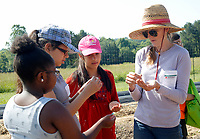 NWA Democrat-Gazette/DAVID GOTTSCHALK Willa Thomason (right), assistant farm manager at Apple Seeds Teaching Farm in Gulley Park, distributes Wednesday, June 6, 2018,squash seeds  for planting to students participating in the Food Ambassadors program at the farm in Fayetteville. The week long program provides the students with the skill, knowledge and resources in gardening, nutrition and cooking so they are prepared to take a leadership role at their schools.