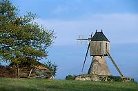 Europe/France/Pays de la Loire/49/Maine-et-Loire/Env de Savennières: Mouin de la Petite Roche