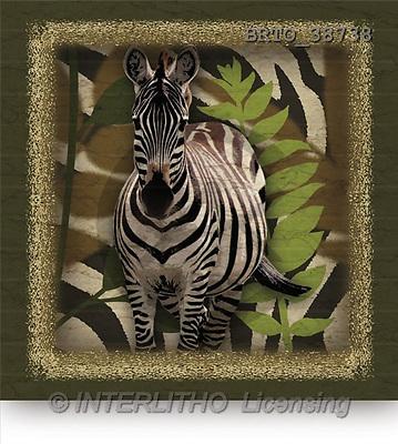Alfredo, REALISTIC ANIMALS, paintings(BRTO38738,#A#) realistische Tiere, realista, illustrations, pinturas