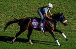 October 29, 2019 : Breeders' Cup Juvenile Fillies Turf entrant Crystalle, trained by John C. Kimmel DVM, exercises in preparation for the Breeders' Cup World Championships at Santa Anita Park in Arcadia, California on October 29, 2019. John Voorhees/Eclipse Sportswire/Breeders' Cup/CSM