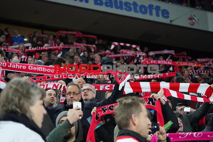 08.02.2019, RheinEnergieStadion, Koeln, GER, 2. FBL, 1.FC Koeln vs. FC St. Pauli,<br />  <br /> DFL regulations prohibit any use of photographs as image sequences and/or quasi-video<br /> <br /> im Bild / picture shows: <br /> Fans, freundlich, Stimmung, farbenfroh, Nationalfarbe, geschminkt, Emotionen, k&ouml;lner<br /> <br /> Foto &copy; nordphoto / Meuter