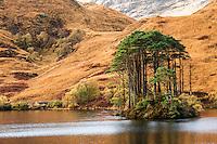 Loch Eilt, Island, Scotland