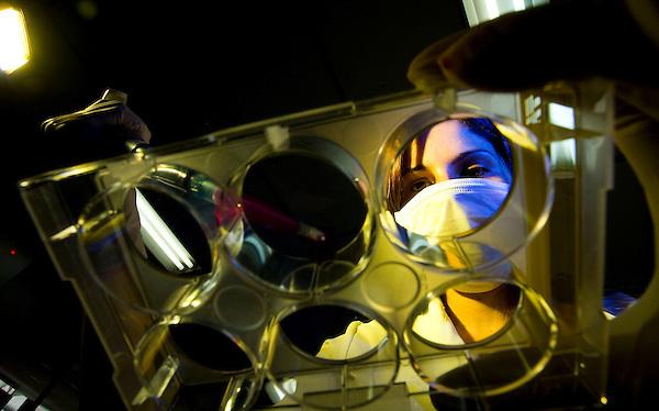 Belo Horizonte_MG, Brasil...Centro de excelencia em inovacao de medicamentos, baseado em nanotecnologia, na Universidade Federal de Minas Gerais (UFMG) - o Instituto Nacional de Ciencia e Tecnologia em Nano-Biofarmaceutica da universidade. ..Excellence Center in innovation of medicines, based on nanotechnology in the Federal University of Minas Gerais (UFMG) - National Institute of Science and Technology in Nano-Biopharmaceutics University...Foto: LEO DRUMOND / NITRO