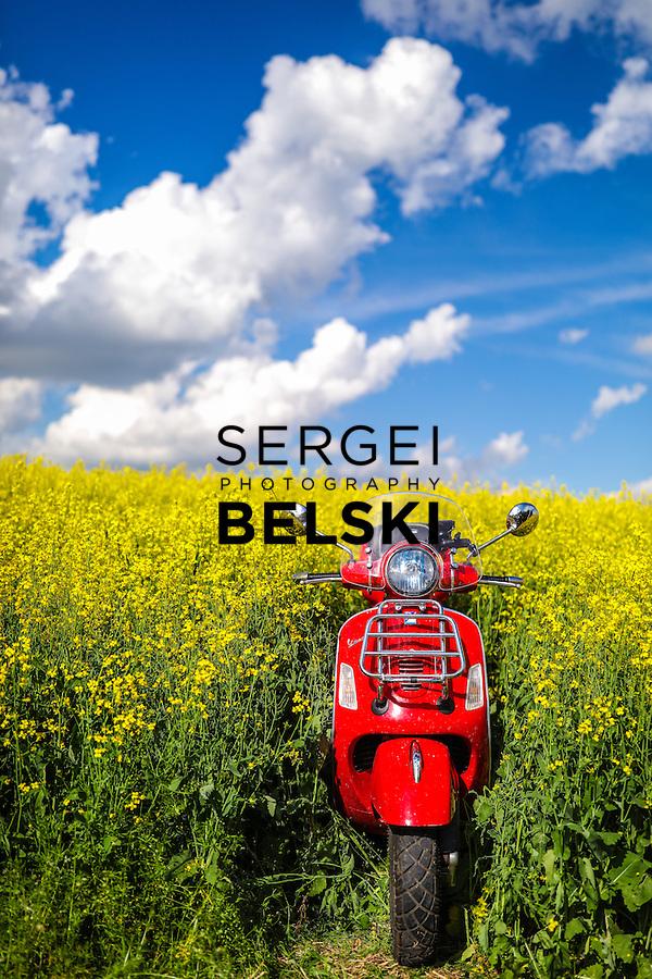 My Vespa Adventures Canola and BBQ Corn. Photo Credit: Sergei Belski