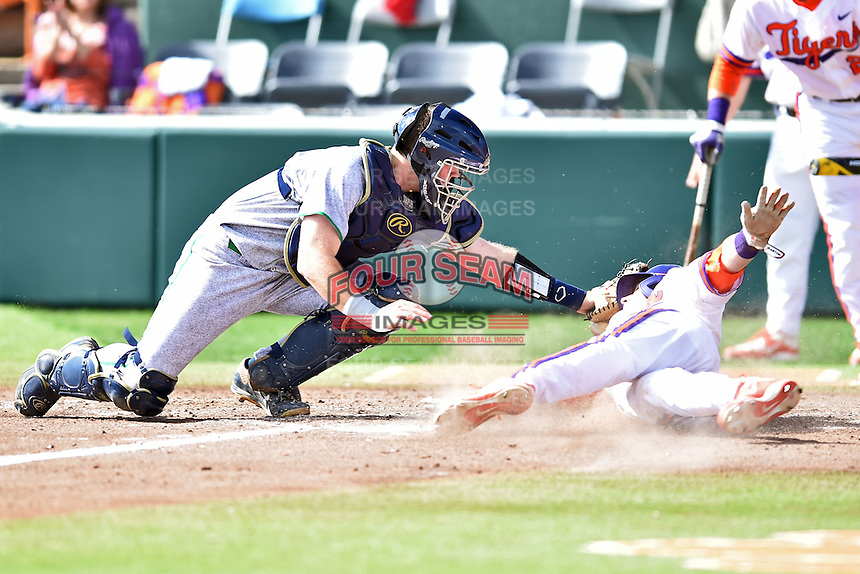 Notre Dame Fighting Irish catcher Ryan Lidge (36) fields the throw and applies the tag as Steven Duggar (9) slides home and  Reed Rohlman (26) watches during a game against the Clemson Tigers during game one of a double headers at Doug Kingsmore Stadium March 14, 2015 in Clemson, South Carolina. The Tigers defeated the Fighting Irish 6-1. (Tony Farlow/Four Seam Images)