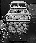 A basket of baseballs in the North Carolina dugout.