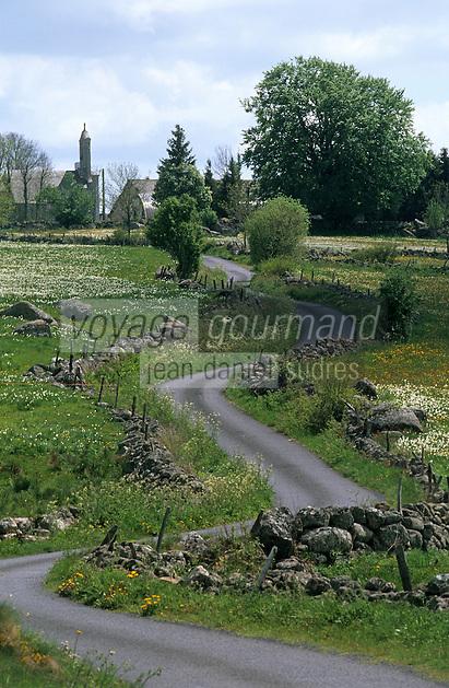Europe/France/Auvergne/12/Aveyron: Aubrac - Route à travers les pâturages
