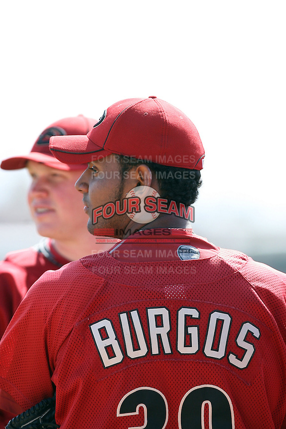 Enrique Burgos, Arizona Diamondbacks 2010 minor league spring training..Photo by:  Bill Mitchell/Four Seam Images.