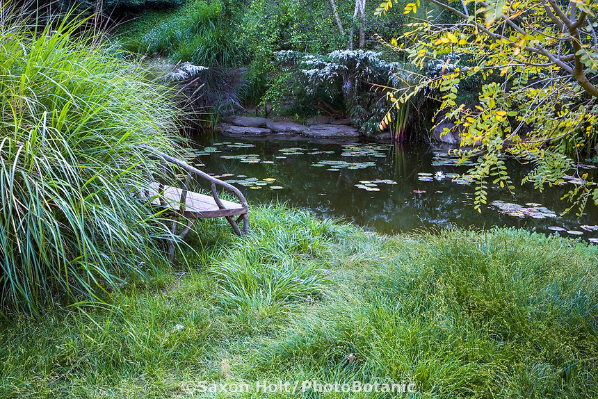 bench by pond in Grass meadow garden (Wells Malibu May)