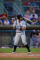 Hudson Valley Renegades Cristhian Pedroza (21) at bat during a NY-Penn League game against the Mahoning Valley Scrappers on July 15, 2019 at Eastwood Field in Niles, Ohio.  Mahoning Valley defeated Hudson Valley 6-5.  (Mike Janes/Four Seam Images)