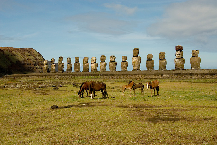 Chile, Easter Island: Horses before array of statues or moai on a platform or ahu at Ahu Tongariki, near the quarry Rano Raruku.  This is the largest array of moia on Easter Island, consisting of 15 moai..Photo #: ch247-32731.Photo copyright Lee Foster www.fostertravel.com lee@fostertravel.com 510-549-2202