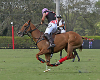 WELLINGTON, FL - MARCH 12:  Facundo Pieres of Orchard Hill controls the ball as Orchard Hill defeats Audi 9-8, in the early rounds of the 26 goal USPA Gold Cup at the International Polo Club, Palm Beach on March 12, 2017 in Wellington, Florida. (Photo by Liz Lamont/Eclipse Sportswire/Getty Images)