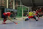 TSV Mannheim - Mannheimer HC 08.01.2020