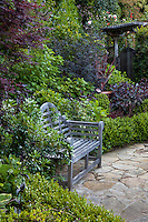 Wooden bench on stone patio nestled next to shrub hedge