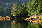 Haida Gwaii/Queen Charlotte Islands, British Columbia, Canada