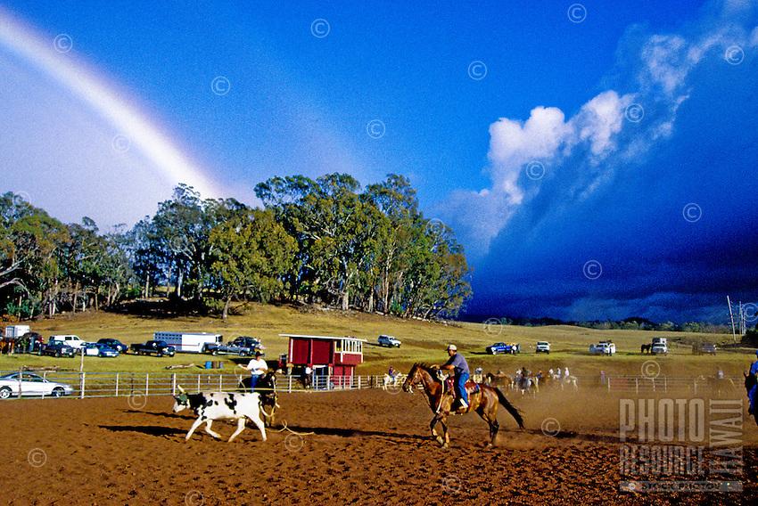 Roping in Olinda under a rainbow