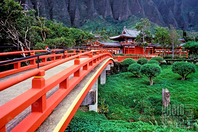 Lush view of Byodo-in temple nestled at the foot of the Koolau mountain range on windward Oahu. Interesting angle of red bridge leading the path to the authentic Buddhist temple.