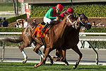 ARCADIA, CA   FEBRUARY 3 : #7 Hayabusa One, ridden by Victor Espinoza and #5 Itsinthepost, ridden by Tyler Baze, neck and neck in the stretch of the San Marcos Stakes (Grade ll) on February 3, 2018 at Santa Anita Park in Arcadia, CA.(Photo by Casey Phillips/ Eclipse Sortswire/ Getty Images)