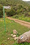 Israel, the Upper Galilee. The Peak Trail on Mount Meron